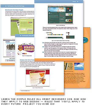pages 3 vector The Principles of Beautiful Web Design