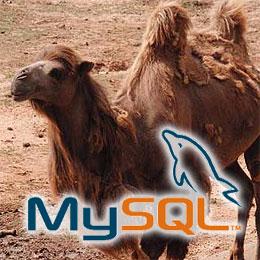 MySQL table names