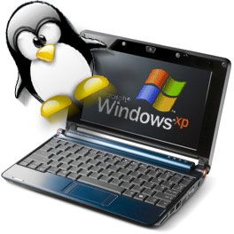 Windows and Tux