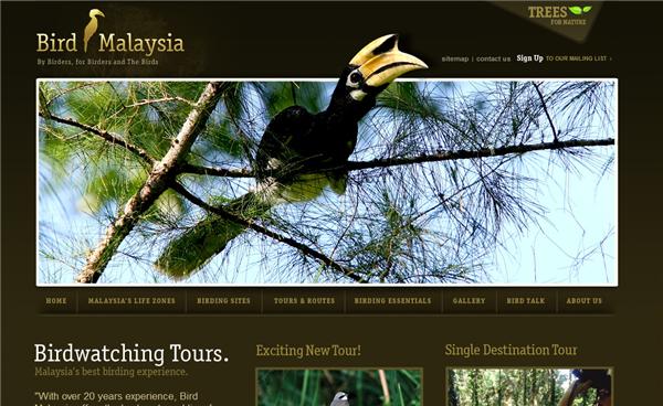 BirdMalaysia
