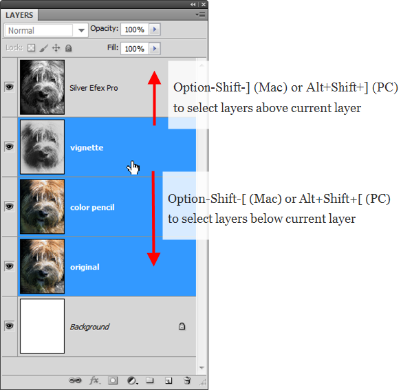 how to work with layers in photoshop cs4