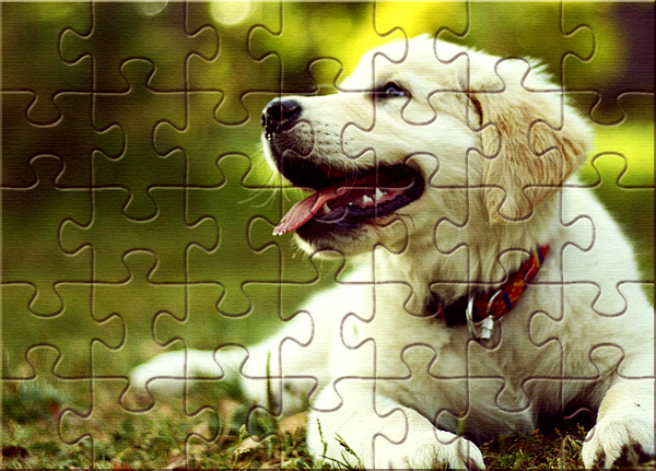 jigsaw puzzle Photo effect