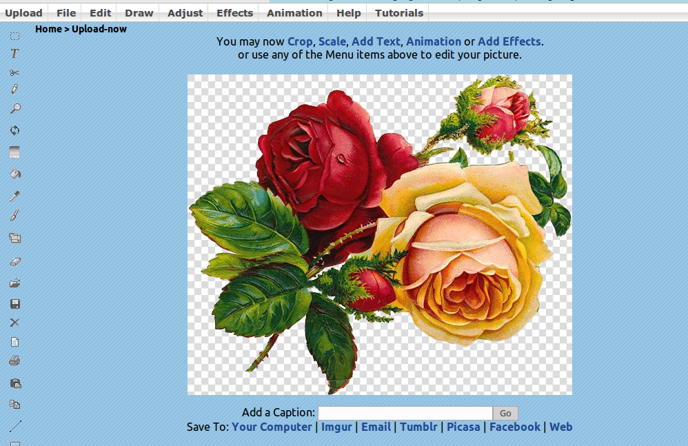 lunapic pixelate
