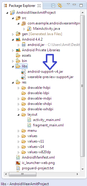 Both the jar files copied to the <strong>libs/</strong> directory