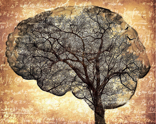 Brain tree artwork by Eduardo Mueses