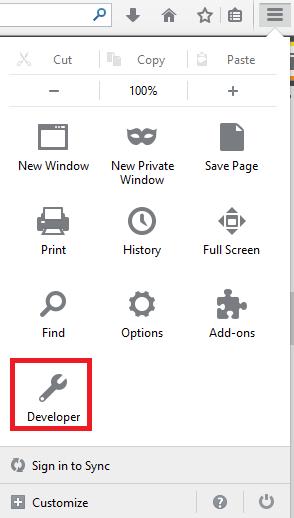 Developer Tools Option