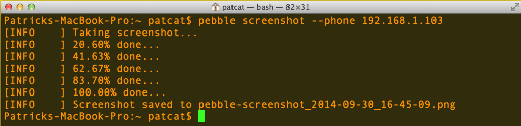 Running the screenshot command<
