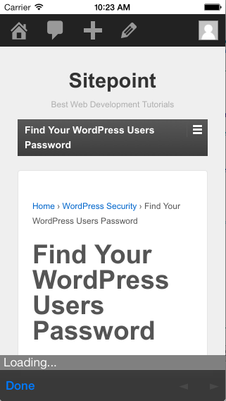 PhoneGap using WordPress 3