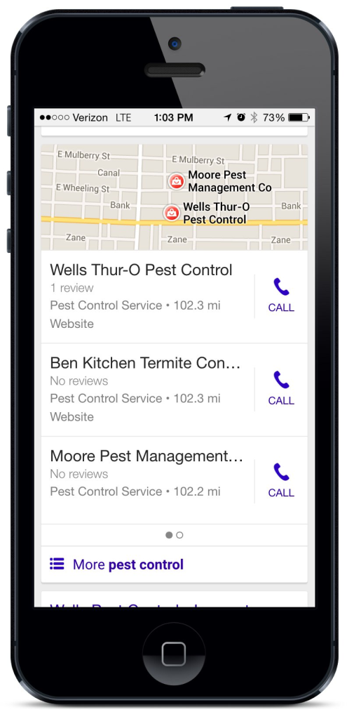 A preview of mobile local search