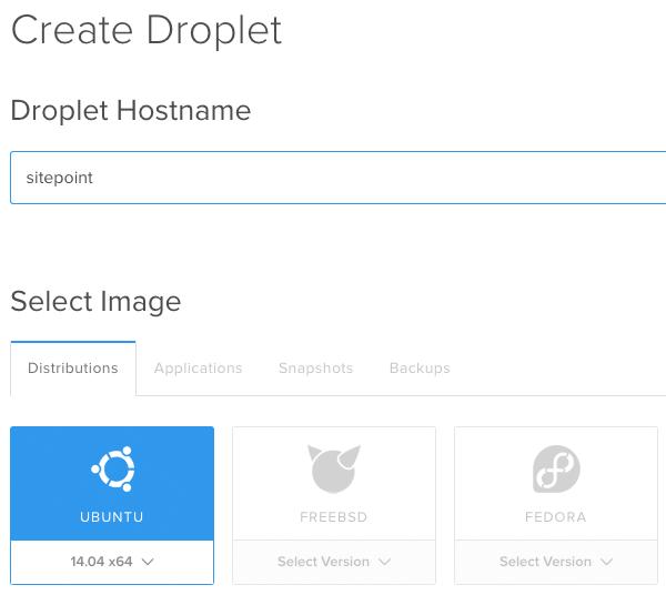 Droplet Hostname