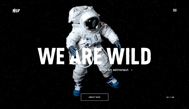 Screenshot: We Are Wild