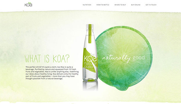 Website for Koa