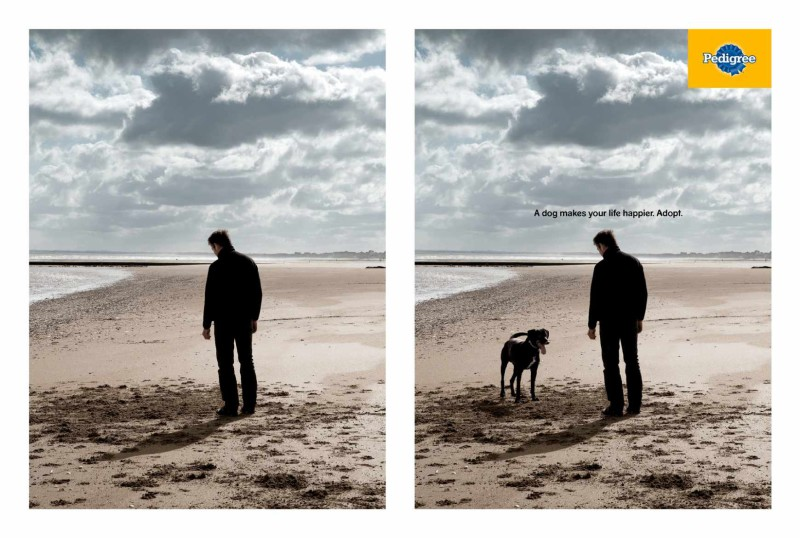 Two photos: Man alone - man with dog