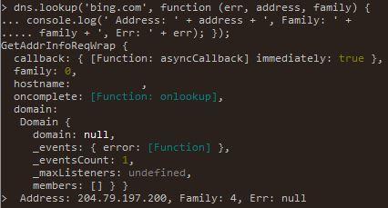 Node.js DNS lookup