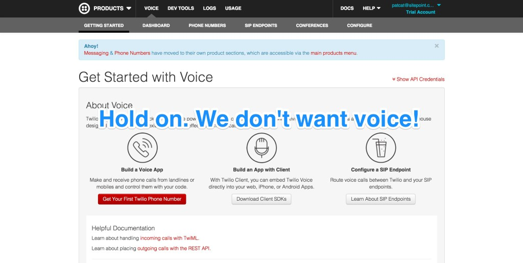The Twilio voice screen