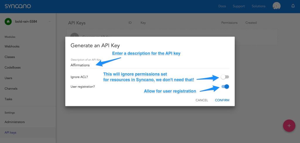 Inputting in API key settings