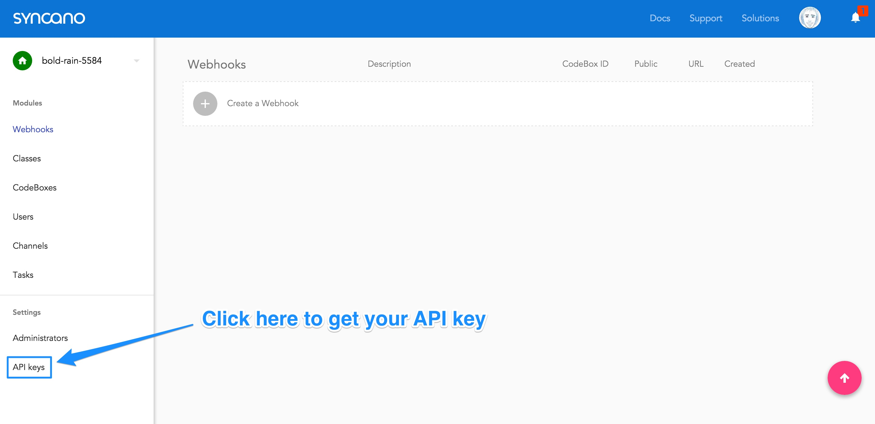 Going to the Get API Key screen