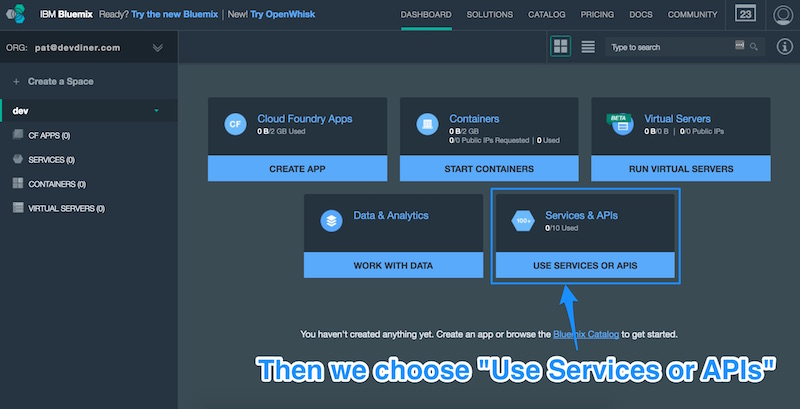 Choosing Use Services or APIs