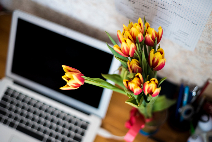 Plants that boost creativity