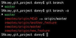 Command showing the branches in the local copy as well as the origin branch