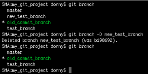 Deleting a branch in Git
