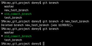 Deleting a branch in Git