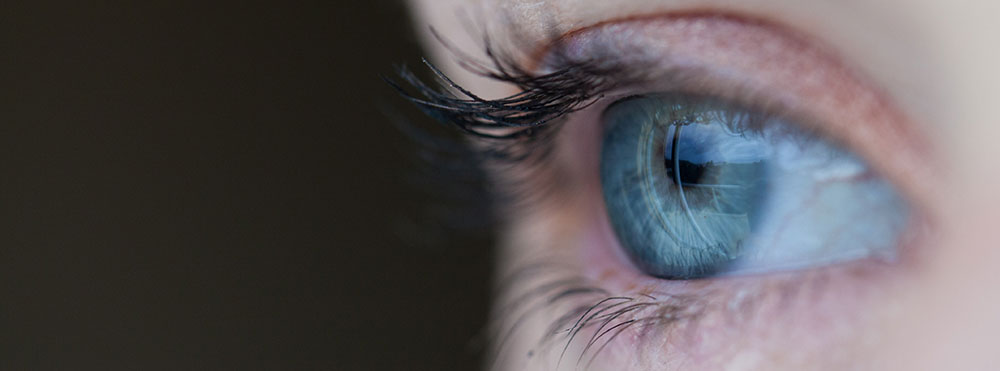 A human's optical sensor array