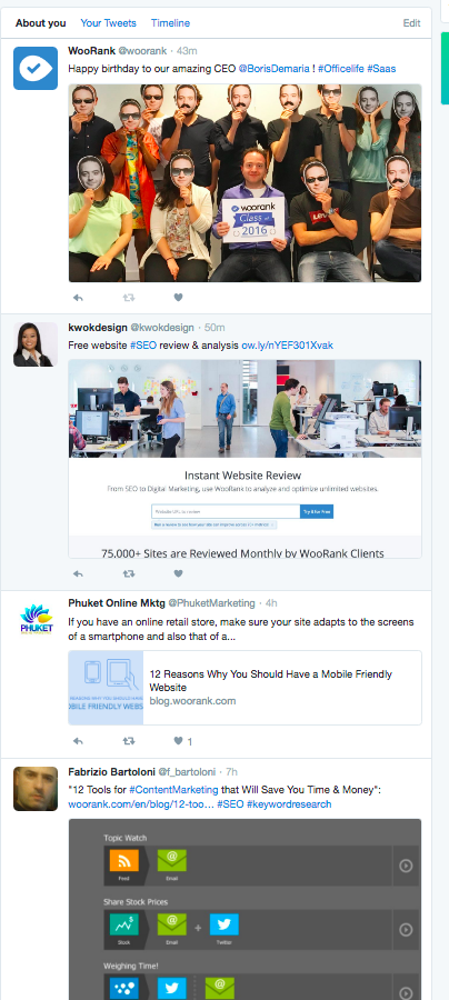 Twitter dashboard custom feed