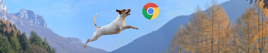 browser trends rise of underdog