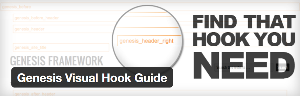 Genesis Visual Hook Guide