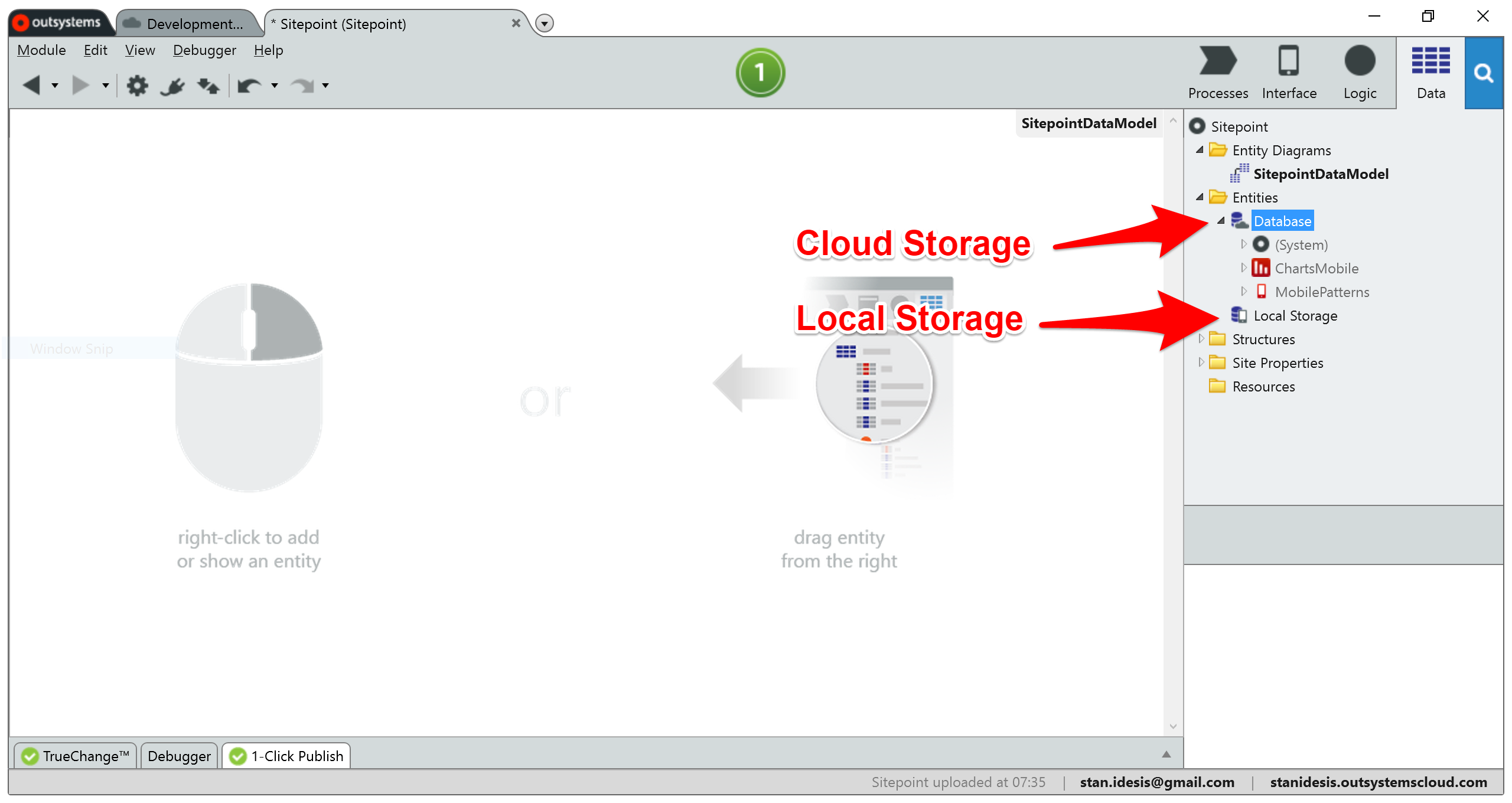 Cloud and Local Storage
