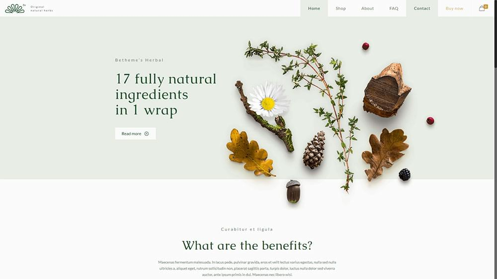 Be Theme - Herbal How to Get on Top of Your Design Tasks Like a Pro - 151355797712 - How to Get on Top of Your Design Tasks Like a Pro