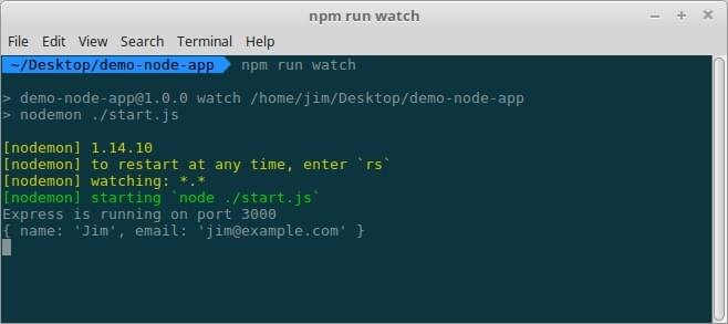 Form output logged to terminal