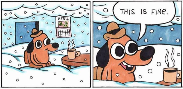 The is fine meme, but with snow