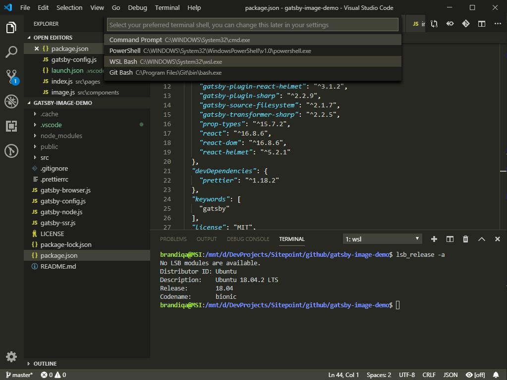 VS Code WSL Terminal