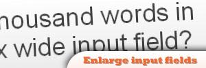 jQuery-Enlarge-input-fields.jpg
