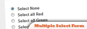 jQuery-Multiple-Select-Form.jpg