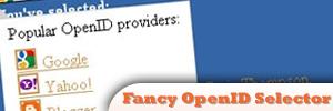 jQuery-Fancy-OpenID-Selector.jpg