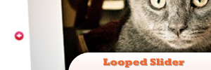 jQuery-Looped-Slider.jpg