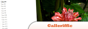 jQuery-galleriffic.jpg