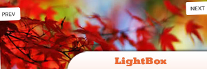 jQuery-lightbox.jpg