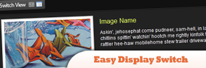 Easy-Display-Switch-with-CSS-and-jQuery-.jpg
