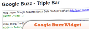 Google-Buzz-Widget.jpg