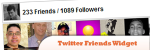 Twitter-Friends-Widget.jpg