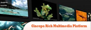 Cincopa-Rich-Multimedia-Platform2.jpg