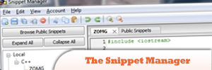 The-Snippet-Manager.jpg