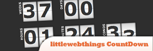 littlewebthings-CountDown.jpg