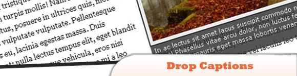 jQuery-Drop-Captions-Plugin.jpg