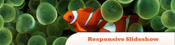 Responsive jQuery Slideshow