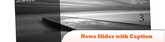 News Slider with Caption